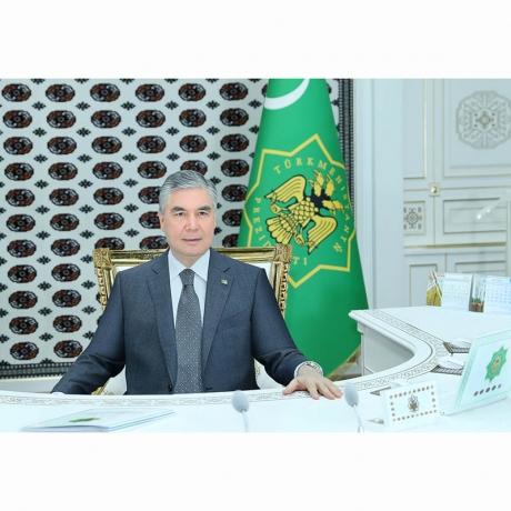 Türkmenistanyň Prezidenti sanly ulgam arkaly iş maslahatyny geçirdi